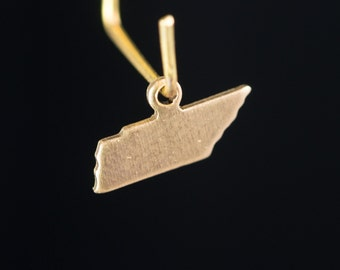 Raw Brass Tiny Tennessee Blank State Charm Drops (2) chr229EE