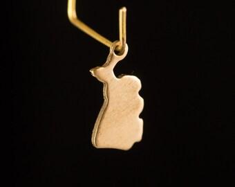 Raw Brass Tiny Michigan Blank State Charm Drops (2) chr229M