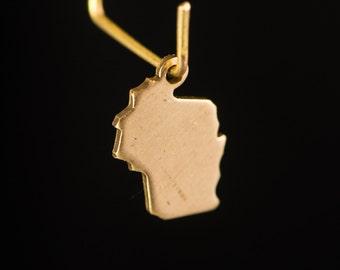 Raw Brass Tiny Wisconsin Blank State Charm Drops (6) chr228LL