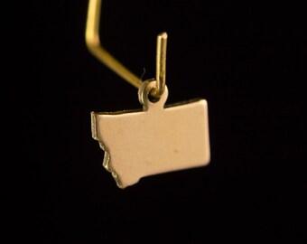 Raw Brass Tiny Montana Blank State Charm Drops (2) chr229UU
