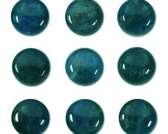 Dakota Stones Blue Apatite 10mm Round Coin Cabochon Gemstones. CAB-BAP10DC