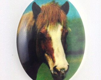 Vintage Brown and White Horse Acrylic Cameo 40x30mm (1) cab748H