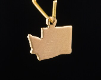 Raw Brass Tiny Washington Blank State Charm Drops (6) chr228F