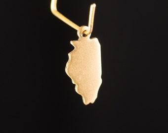Raw Brass Tiny Illinois Blank State Charm Drops (6) chr228G