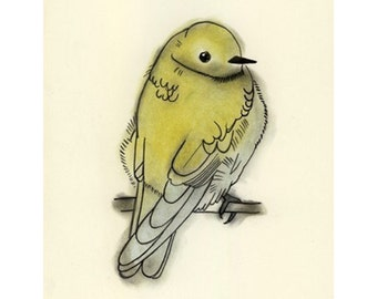 Bird Art -  Chilly Morning - 4 X 6 print - 4 for 3 SALE