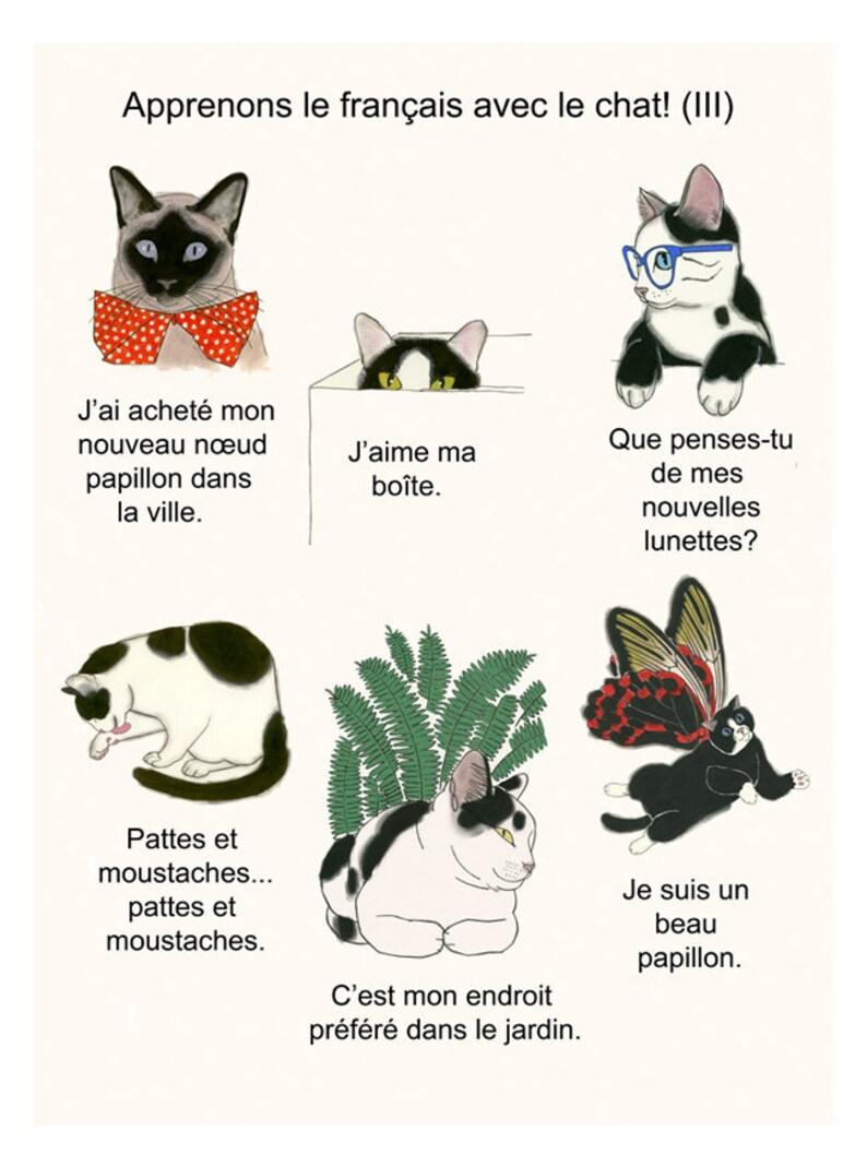 Katzen datieren Profil saudi arabische Dating-Seiten