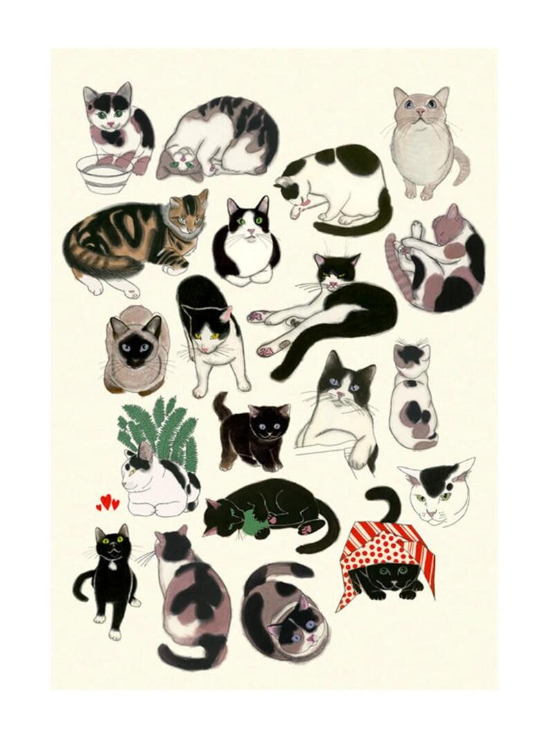 il tuo gatto datazione