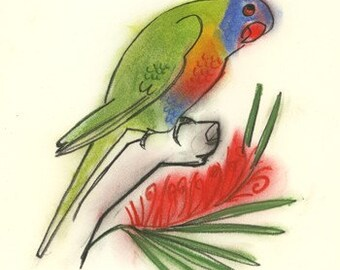 Parrot art - Rainbow Lorikeet Bird Art - 4 for 3 SALE Little Larry - 4 X 6 Australian bird print