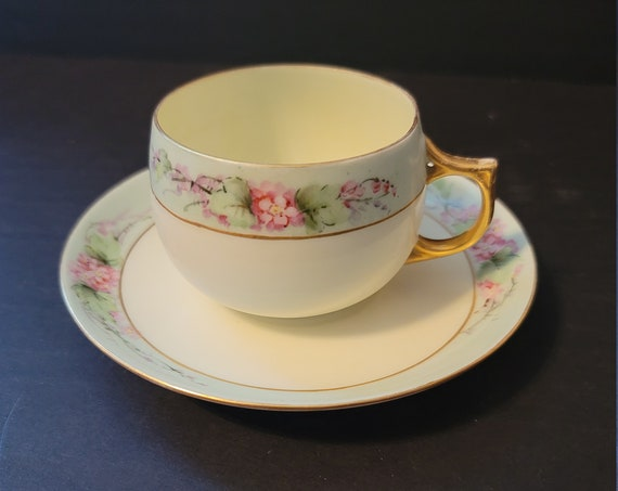 J and C Bavaria Cup & Saucer Cherry Blossoms