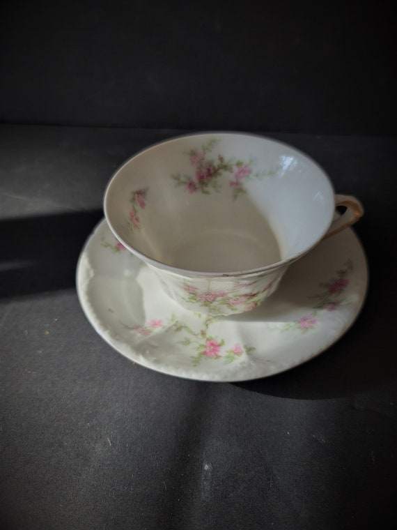 Rare T Haviland Limoges Cup and Saucer