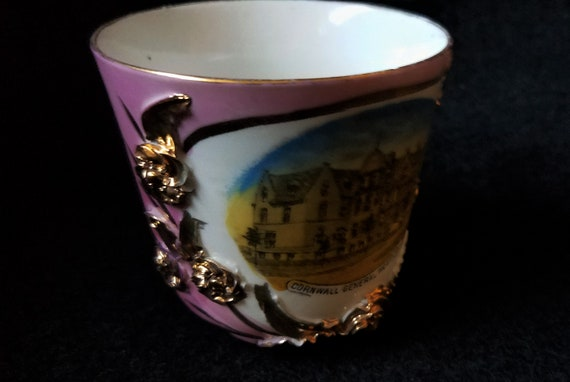 Cornwall General Hospital Teacup