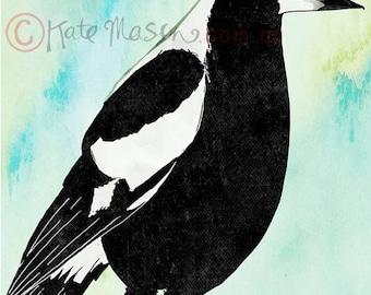 Magpie ART PRINT Australian Birds