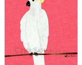 Sulphur Crested Cockatoo ART PRINT Australian Birds