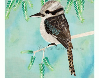 Kookaburra ART PRINT Australian Bird Series