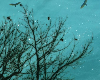 Nature photography, bare trees, crow, raven, black bird, birds, haunted forest, teal, aquamarine, turquoise, black