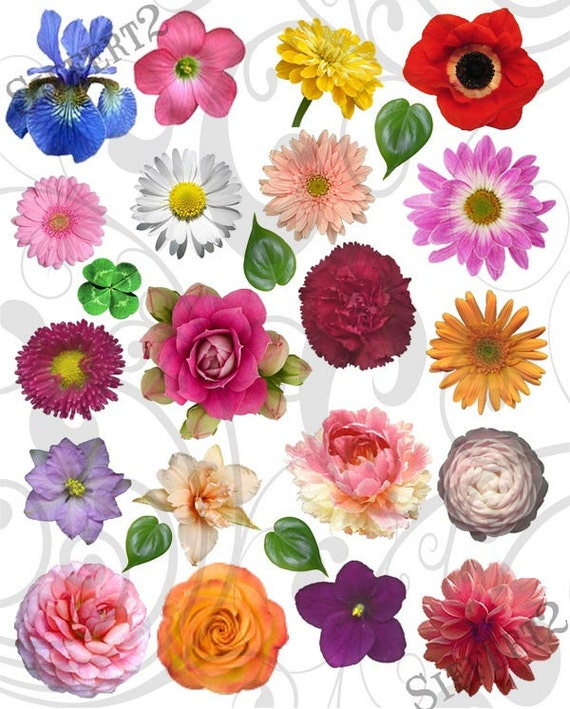 Garden Variety Flowers Collage Sheet 1gvc Etsy