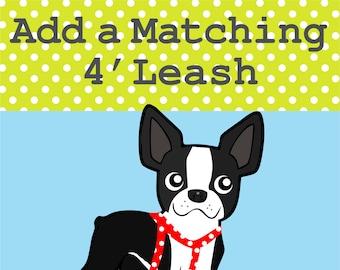 Matching 4' Leash