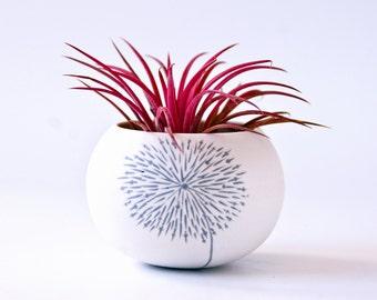 kleine keramische planter paardebloem ontwerp (licht grijze Paardebloem). Mini plantenbak voor cactus, sappig of air plant. Vervaardigd door Wapa Studio.