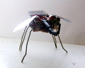 Gonzo the flapping solar powered robot