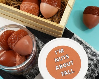 I'm Nuts About Fall Acorn Soap / Funny Fall Gift / Fall Gift / Funny Thanksgiving / Gag Gift / Fall Birthday Gift / Cute Gift / Autumn