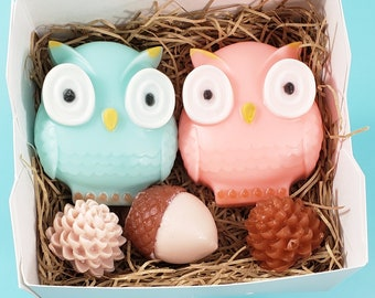 Owl Gifts / Soap Gift Set / Owl Decor / Woodland Animals Baby Shower / Woodland Gift / Gift basket for Women / Cute Gifts for Friend