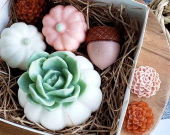 Pumpkin Succulent Soap Gift Set / Pumpkin Decor / Autumn Gifts / Housewarming Gift / Thanksgiving Gift Set / Succulent Gift / Fall Decor