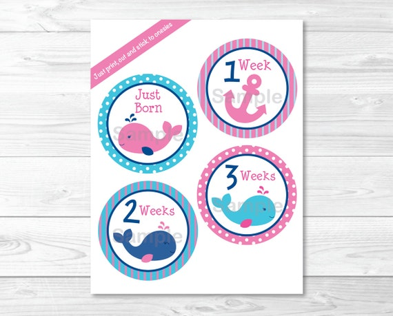 711431c5d Cute Pink Whale Monthly Milestone Stickers / Whale Baby Shower / Nautical  Baby Shower / Iron Ons / Printable INSTANT DOWNLOAD A348