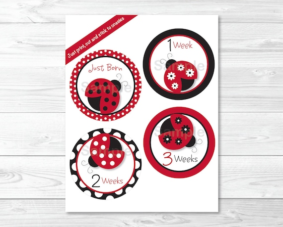 image about Printable Iron Ons referred to as Ladybug Month-to-month Milestone Stickers / Onesie Stickers