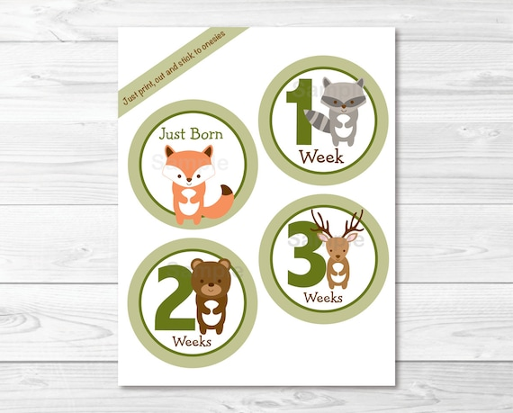 Excellent Woodland Forest Animal Monthly Milestone Stickers Iron Ons Complete Home Design Collection Epsylindsey Bellcom
