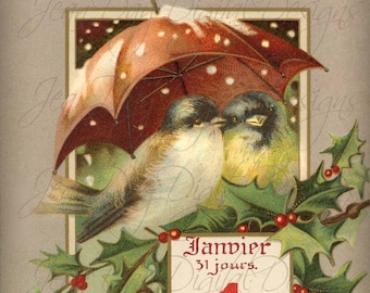 Sweet Bird Couple, New Year, Janvier 1, Bonne Année, - French Postcard early 1906 -Instant Download - FrA075