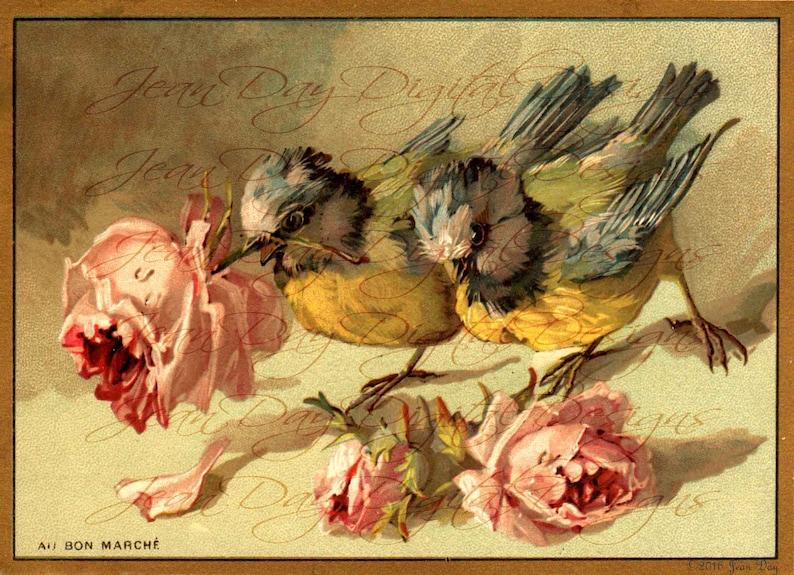 OIseaux Instant Download French Birds Birds Digital larger image Bon Marche ad Summer Roses FrA179 French Ad