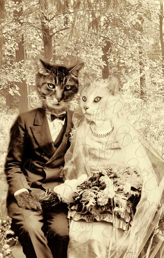 Cats Wedding Cat Bride And Groom Digital Collage Design Etsy