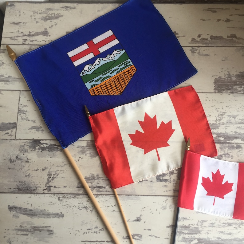 Vintage Flags on a Stick Souvenirs Choice Canada Alberta Mexico Classroom Size