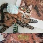 Custom Cat Angel Tree Topper - Cat Memorial Art Personalized - Your Cat - Christmas Tree Topper