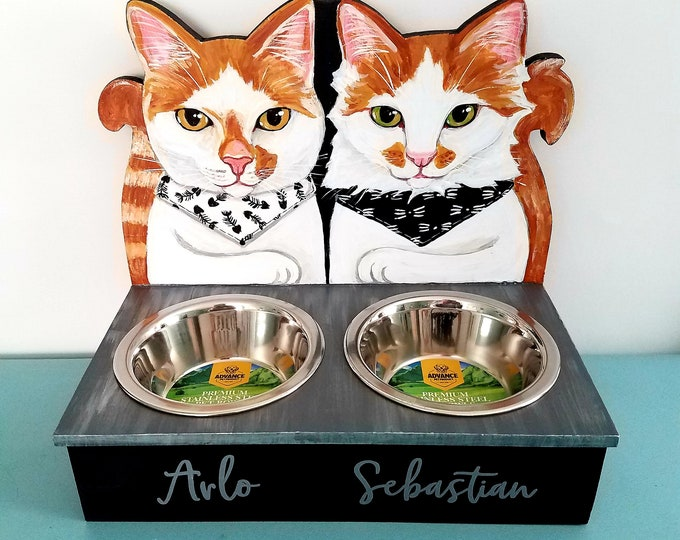 Custom Cat Feeders