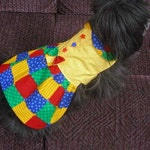 Reserved for Kenzie - SHE'S a STAR dress and hat - 2 to 20 pound dogs - Made to order