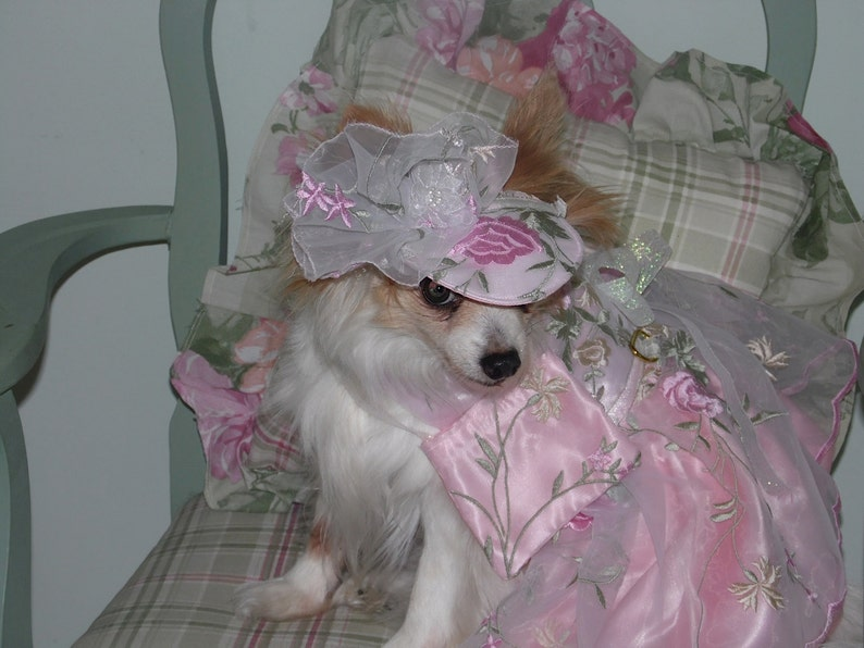 Wedding or Special Occasion CUSTOM ORGANZA BRIDESMAID dog dress Prom Check on timing and fabrics- made to order up to 20 lbs
