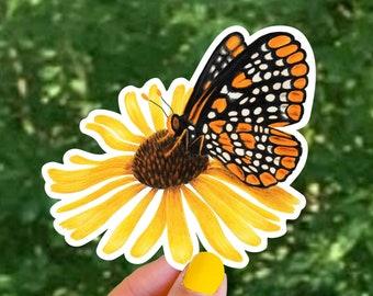 Baltimore Checkerspot Sticker, Butterfly Decal