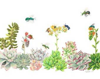 """Bees and Succulents 8""""x10"""" Print"""