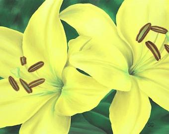 Yellow Lilies 8x10 Print