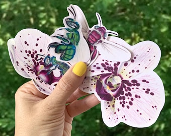 Big! Orchids and Orchid Bees Stickers Collection, Colorful Bees