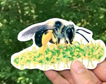 Mining Bee Sticker, Native Bee Decal, Andrena