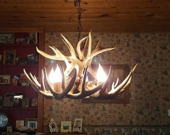 Antler chandeliers etsy 23 inch whitetail chandelier 12 antler design 5 elk antler covered socket aloadofball Gallery