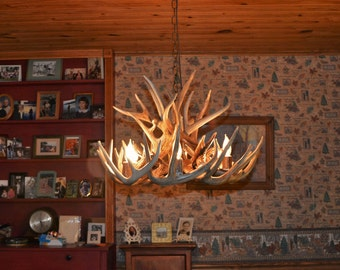 Antler chandelier etsy brand new 26 inch whitetail deer shed antler chandelier with center down light aloadofball Gallery