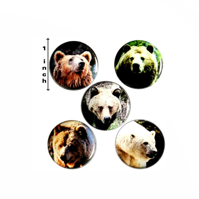 Bears 5 Pack // Backpack Pin // Lapel Pin // Brooch, Badge // Cute Pinback  or Fridge Magnet - Nature Gift 1