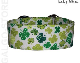 "Galgostore's dog collar ""Lucky Fellow"", martingale, buckle / tag collar,shamrocks, handmade, custom, greyhound collar"
