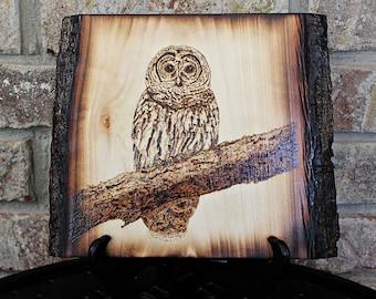Barred Owl Original Wood Burned Art Pyrography Animal Nature Woodburn by Hendywood (W)