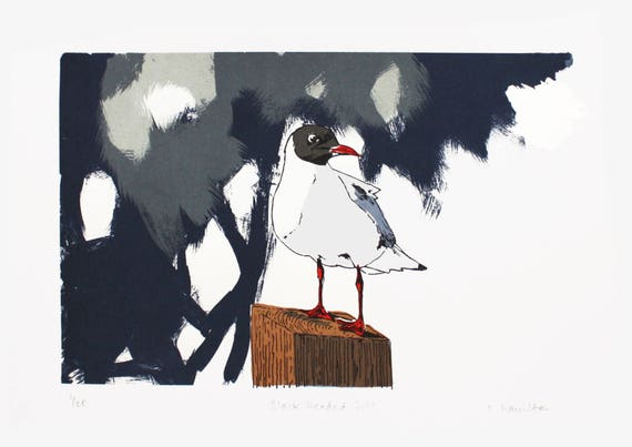 Black Headed Gull Screen Print