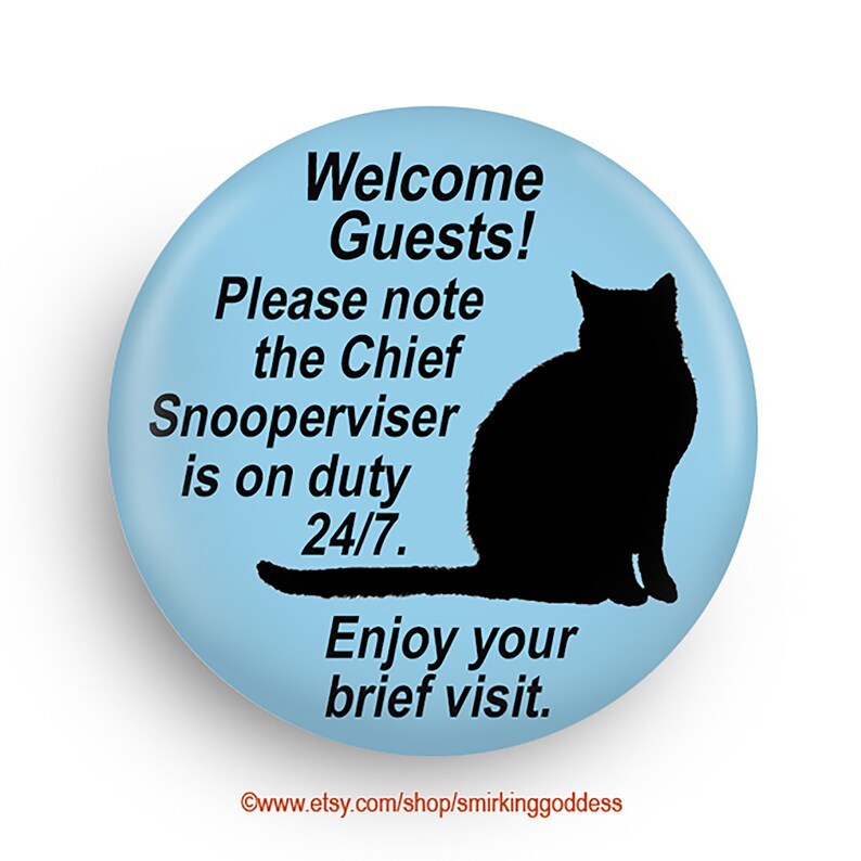 Funny Cat Magnet A Fun Stocking Stuffer for Introverts image 0