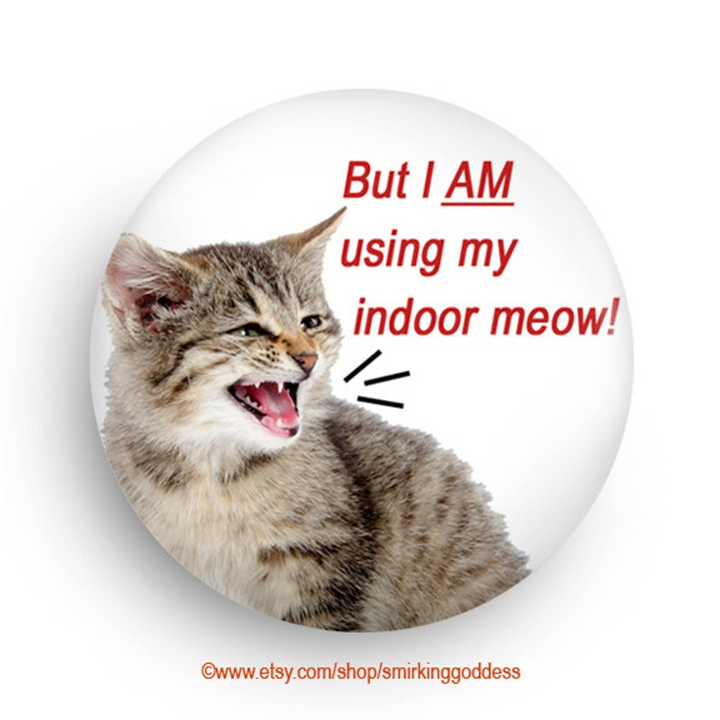 Funny Magnet Funny Cat Fridge Magnet Gift for Cat Owner image 0